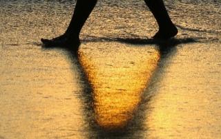 Storie a piedi nudi 2